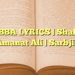 RABBA LYRICS | Shafqat Amanat Ali | Sarbjit